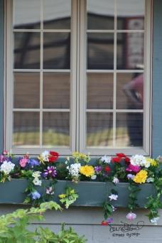 5098 window sillwith flowers