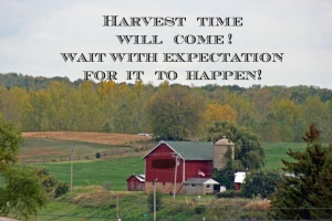 Are you ready to receive the harvest you  planted? Be ready. God's time will show up, sometimes when you least expect it!
